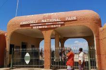 肯尼亚的第一站-安博西里国家公园。