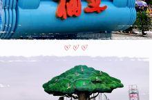 续四【奥林匹克公园展出的彩车】新中国70周年庆典活动上,除了精彩的阅兵,吸引人眼球的还有五彩斑斓的彩