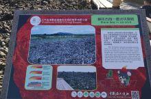 石海是大自然的奇观,很幸运这一次能够在黑龙江五大连池景区见到世界上最年轻的火山遗迹,石海非常壮观,喷