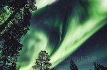 近日,芬兰伊瓦洛上空出现唯美北极光,宛如一片绿色森林,非常壮观。 