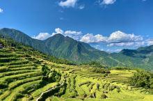 上海周边度假好去处  云和梯田跨越高山、丘陵、谷地三个地质景观带,最多有700多层,是华东最大的梯田
