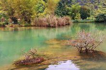 自带滤镜,这里是遇龙河的发源地,从广西流入越南,在德天流回中国,跌落成著名的跨国瀑布—德天瀑布。从大