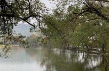 """享有""""中国画里水乡""""美称的水墨宏村~秋雨过后有着不一样的风景!朦胧中的南湖~月沼显得格外的清新淡雅!"""