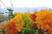 磬锤峰国家森林公园与驰名中外的避暑山庄和外八庙风景名胜镶嵌相融,公园自然景观奇特,以千岩竞秀、异峰峥