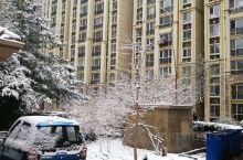小区内的雪景