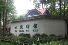 武汉动物园坐落在武汉市汉阳区墨水湖畔,它的前身是武汉中山公园动物园,是在原汉阳区苗圃的基础上兴建的。