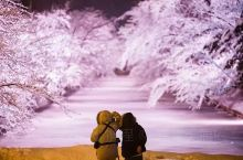 日本本州岛最北端的青森县,是日本自然环境最优越的地方之一。这里藏着和富士山同等名气的国宝名胜——奥入
