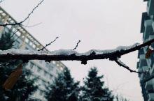 下雪啦! 秦皇岛·河北   燕山大学