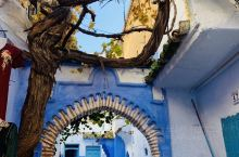 无处不在的蓝,证明了自己作为世界三大蓝白小镇之一的地位和象征。世界各路网红和伪网红都纷至沓来到这里打