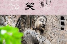 游在河南|神都洛阳八景之一:龙门石窟