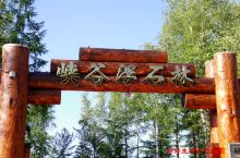 峡谷浮石林位于吉林省长白山山门东南6公里处,大部分成分由浮石组成。         峡谷浮石林的山门