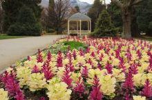 新西兰皇后镇有个后花园,真的是超级,超级的美。我们还是初冬的时候去的,里面也被打理的很漂亮。特别的清