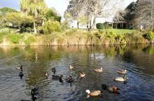 奥克兰植物园