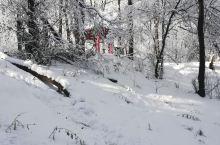 吉林龙潭山遗址公园  站在龙潭山遗址公园的制高点,可以俯瞰吉林市市区和松花江,天气晴好的时候对山下一
