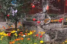 """800年丽江,第一次空城! ~~~~~~~~~~~~~~~~~~ """"800年风霜、800年雨雪、80"""