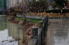 这是江西九江市修水县城南向阳骨科医院旁边的河边风景!