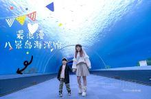 日本最大,在八景岛海洋馆玩出一个梦幻海底世界来  八景岛是一个人工岛,坐落于横滨湾的末端,岛上有整个