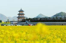 罗平航空房车国际露营地,位于罗平县城 罗平航空房车国际露营地  旁3公里,与油菜花节主会场连片,是最