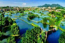 古劳水乡又称围墩水乡,据史载,至今已有600多年历史。水乡地处西江岸边,明洪武二十七年,古劳人冯八秀