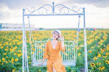 长大后才发觉即便是辽阔无边的草原也有着自己的一丝温婉  希拉穆仁花海,你可熟悉?  这片位于内蒙古自