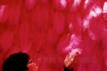 熹乐谷|艺术空间 打开你想像的空间,为你的想象插上粉红色的翅膀,体验不同的心境!全程约二十分钟,让你