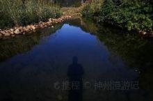 《来自鄄城的诱惑:我真的想要去旅游……》  我是孤独浪子,希望我的拍拍让您有所收获。 漫游神州31载