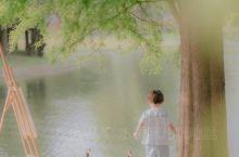 在辰山植物园拍法式朦胧油画风儿童写真 上周在辰山植物园拍照,发现了这个超级梦幻的拍摄地,小桥、湖边、