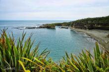 NZ | 亚热带森林步道 Truman Track 煎饼岩当然是最有名的,但你如果想找一个小众些的地