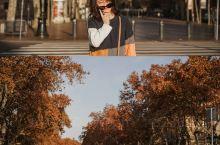 旅拍|巴塞罗那街拍  巴塞罗那的秋天,兰布拉大道那绿荫葱葱的大树泛了黄,悠闲游走在哥特区复杂的小巷里