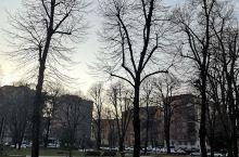 米兰的冬天,随手一拍,真的很美,马路中间普普通通三棵树,换个角度,换个方向,换个姿势,就有不一样的美