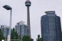 瑞普利水族馆在加拿大多倫多市中心,緊邻着著名的加拿大國家電視塔,为加國内最大的水族馆,是一個非常新的