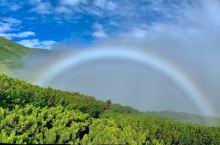 利尻岛也称利尻富士,是日本最北的百名山,孤悬海上,从海面直上1700多米,夏季百花缭乱,7-8月是最