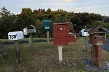 奥克兰人的信箱。