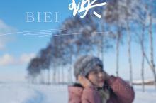 美瑛有北海道最干净的雪。 美瑛在冬季有旅游巴士提供拼布之旅,下午和晚上两场,下午是看网红树,游览美瑛