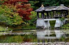 【京都·修学院离宫】  修建于1655年,日本最大的庭园建筑群,是日本三大皇家园林之一。位于京都市左
