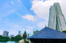 科伦坡,水中寺 坐落在贝拉湖上的水中寺,地处繁华闹事,算的上一片清净地,由一个木质阁楼和一个冥想中心