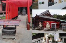 短途旅行路过狸猫神社 #奇妙的巧遇 #意外的惊喜