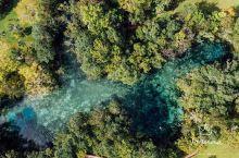在奥兰多去迈阿密之间有个叫水晶湖的地方,真的是地如其名,晶莹剔透的泉水就像童话世界中才会有的地方。而