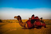 骆驼沙漠之旅,是Jaisalmer最火热的旅游项目。中午2:00,我们坐着越野车向沙漠出发。路过的每