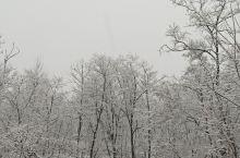 梦里老家,下雪了,你依然最美。