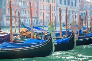 Venice,Recommendations