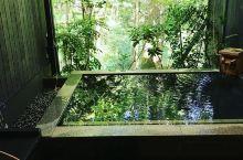 来这里泡温泉不仅可以欣赏美食还能看山边小猴子   这是我和闺蜜在日本最喜欢泡温泉的地方,汤寮后面被绵