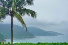 #山茶半岛,吸天地之灵气#  为蚬港遮挡台风的山茶半岛,是个风景优美的原始森林,各个高度的风景各有千