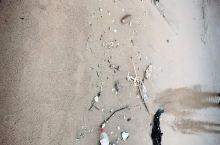 这么脏的海滩,你还有兴趣来玩吗?再想想我们的海洋生物,可怜呀!