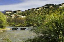酒店推荐‖青山绿水间的一处天堂 提起云南,人们总会习惯性的在后面加上香格里拉,似乎这里已经成为了云
