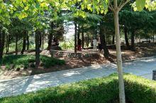 盛夏中的劳动公园,园林篇(续)。大连劳动公园位于市中心青泥洼桥,距火车站南约500米,是市区最大的一