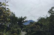富士山脚下急乐园里的战栗迷宫真的是鬼屋翘楚,日本文化有时候觉得很极端,吓人也是往死里吓。这次一方面是