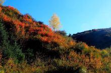 秋意正浓,来到张掖市山丹县国博故里~焉支山森林公园,一股清新的空气扑面而来,闻着清新的空气,踏着一段