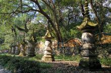 天台山的国清寺是一座有着1400多年历史的隋代古寺,整个景区的面积非常的大,分为上下六七层,一圈佛祖