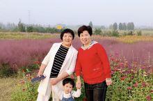西安家门口的公众免费公园        西安泾渭湿地自然保护区位于城北渭河、泾河、灞河交汇区域,地跨